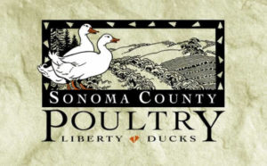 sonoma country poultry logo
